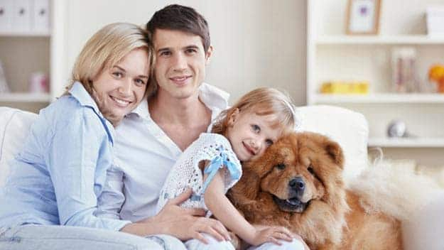 Wills & Trusts dog-young-family Direct Wills Kingston Hill